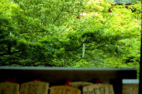 秋葉山円通寺